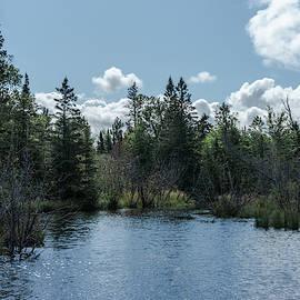 Little creek next to Lake Superior by Guillermo Lizondo