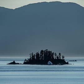 Little Island by Marcy Wielfaert