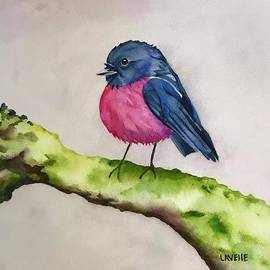 Little Round Bird by Kimberly Lavelle
