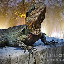 Lizard on a Log #2 by Trudee Hunter