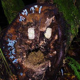 Log Monster by Yulia Kazansky