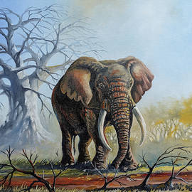 Lone Elephant Browsing by Anthony Mwangi