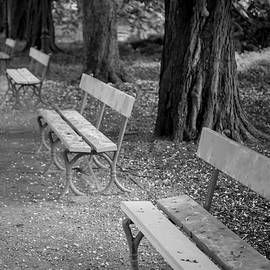 Loneliness in the Park, bench bw by Robert Pastryk