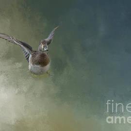 Elisabeth Lucas - Look at My Wings