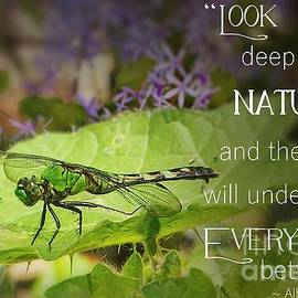 Look Deep Into Nature  by Mary Lou Chmura