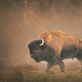 Lord Buffalo by Ron McGinnis