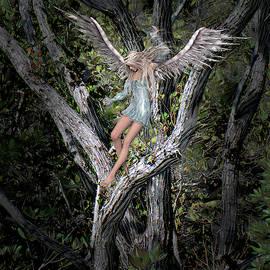 Lost Angel by Rosalie Scanlon