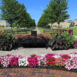 Lovely Downtown Garden by Kay Novy