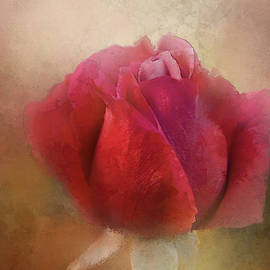 Lovely Vintage Rose by Terry Davis