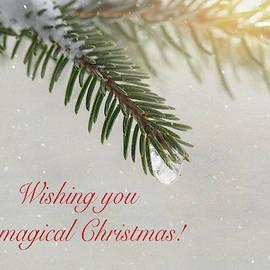 Sharon McConnell - Magical Christmas Card