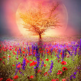 Magical Moon in the Poppies by Debra and Dave Vanderlaan