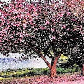 Magnolias By The Lake by Kim Bemis