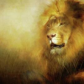 Majestic by Terry Davis