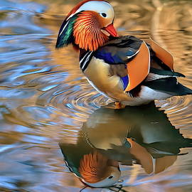 Mandarin in Central Park collection #3 by Geraldine Scull