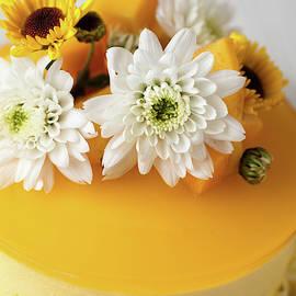 Mango tango cheesecake by Elena Seychelles