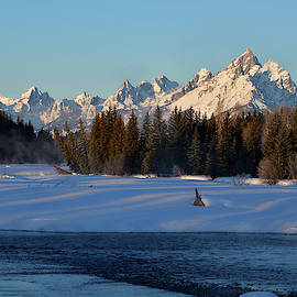 March Morning Below The Tetons by Michael Morse