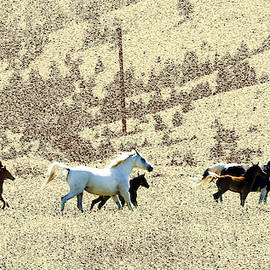 Mares and Foals Running by Kae Cheatham