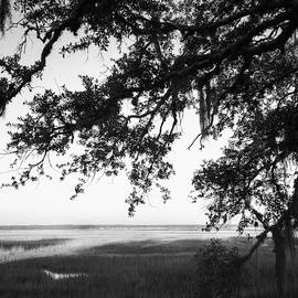 Marshes St Marys, GA by Rudy Umans
