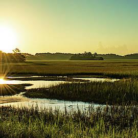 Marshy Sunrise Panorama by Mary Ann Artz