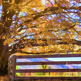 Marvelous Maple in Autumn by Lisa Lemmons-Powers
