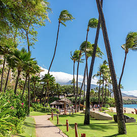Maui Beachfront by Tim Kathka