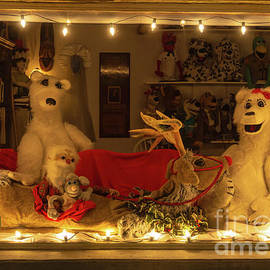 McClellanville Window at Christmas by Norma Brandsberg