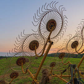 Mechanical Sunflowers by Angelo Marcialis