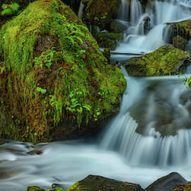 Merriman Falls 919-3 by Mike Penney
