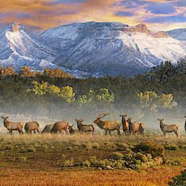 Mesa Verde Elk Pano by R christopher Vest