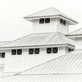 Metal Roofs on a Dull Day - 5608