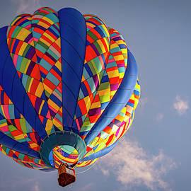 Metamora Balloon Festival 8 by LeeAnn McLaneGoetz McLaneGoetzStudioLLCcom