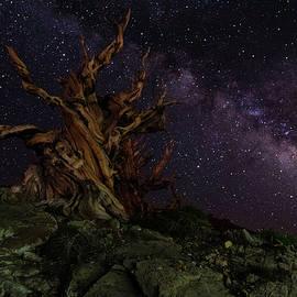 Methuselah and the Milky Way by Scott Cunningham