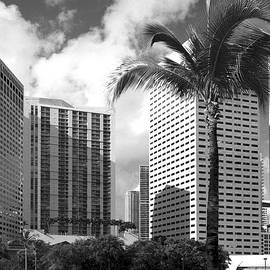 Miami Downtown 071903 by Rudy Umans