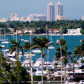Miami Series - Port View by Arlane Crump