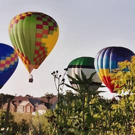 Michigan Balloonfest by Harvest Moon Photography By Cheryl Ellis