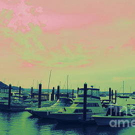 Mid Summer Sunset at Northport Harbor by Dora Sofia Caputo Photographic Design and Fine Art