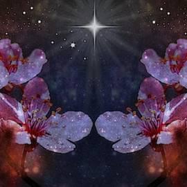 Midnight Blossoms by Marilyn DeBlock