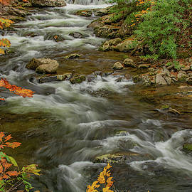 Mighty Moving Water, Tremont by Marcy Wielfaert