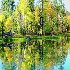 Mirror Lake by Cathy P Jones