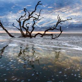 Mirrored in the Tide by Debra and Dave Vanderlaan