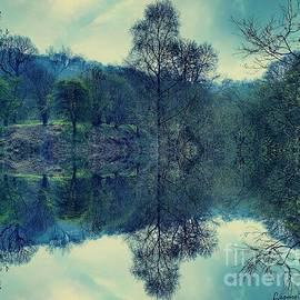 Mirrored Nature by Leanne Seymour