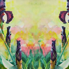 Mirrored Purple Iris by Steve Henderson