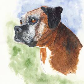 Miss B Boxer Dog Portrait by Conni Schaftenaar