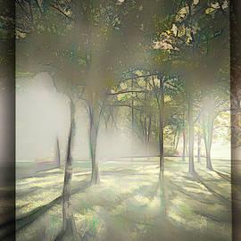 Misty Meandering by Jim Love
