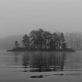 Misty Morning At The Lake by Markus Varneslahti