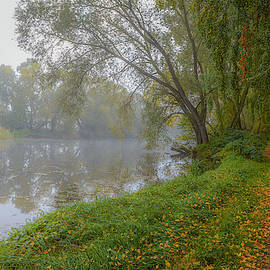 Misty mysic #j2 by Leif Sohlman