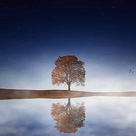 Misty Reflections by KaFra Art