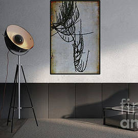 Modern Interior Design by Liz Alderdice