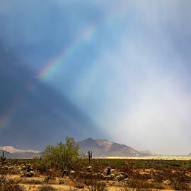 Monsoon Overload by Cathy Franklin