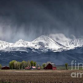 Montana Homestead by Brad Allen Fine Art